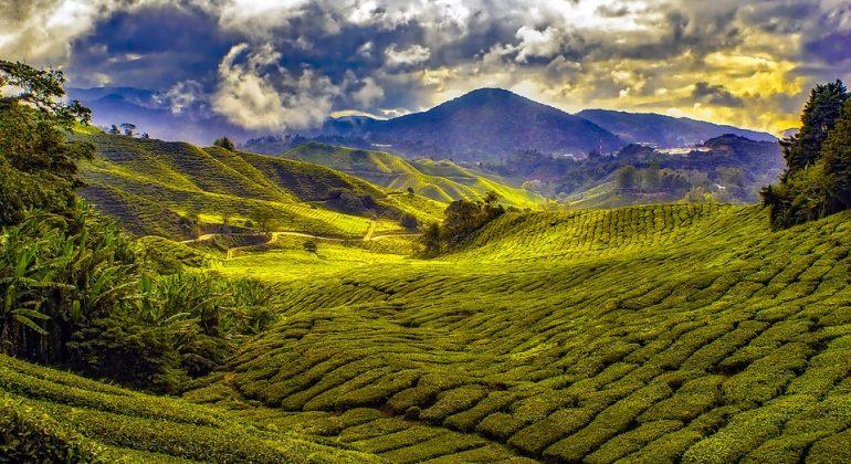 malaysia-1864676_960_720